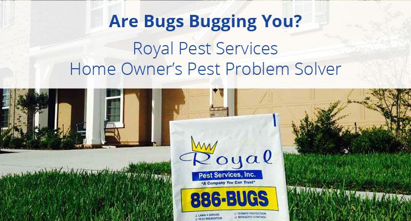 Home Owner's Pest Problem Solver